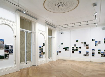 Gardening the Suburbs, installation view, Garden State, The Mosaic Rooms, London, 2015